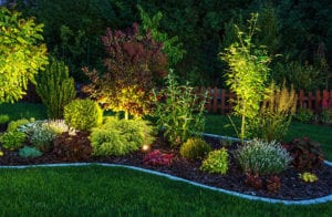 Highlighting Your Yard with Landscape Lighting
